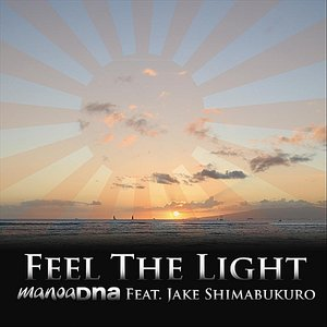 Feel the Light (feat. Jake Shimabukuro)