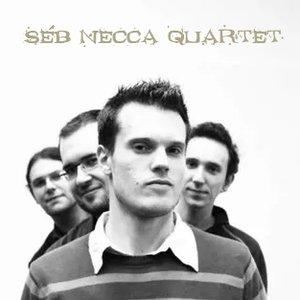 Аватар для Seb Necca Quartet