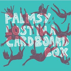 Lost in a Cardboard Box