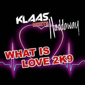 What Is Love 2K9 (Remixes)