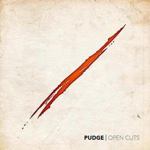 Open Cuts