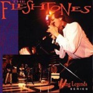 The Fleshtones: Living Legends Series