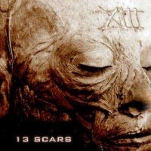 13 Scars