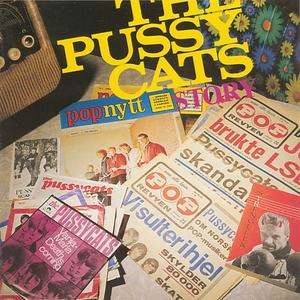 The Pussycats - Just a Little Teardrop