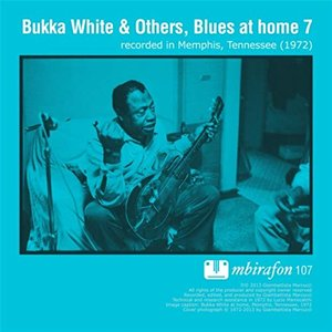 Blues At Home 7