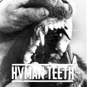 Avatar für HVMAN TEETH