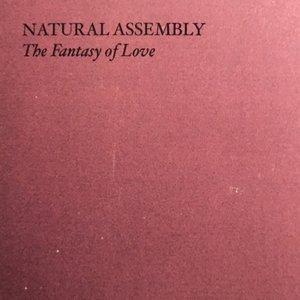 The Fantasy of Love