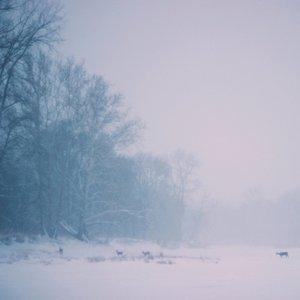 Winteridyll
