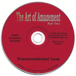 Art of Amazement Part 2: Transcendental Love