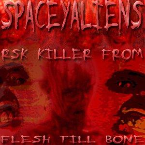 RSK Killer From Flesh Till Bone