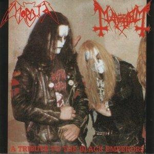 Avatar de Morbid-Mayhem