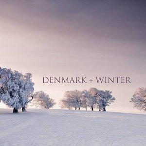 Аватар для Denmark + winter