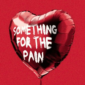 Something For the Pain - Single