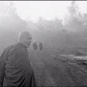Avatar for Ajahn Sumedho