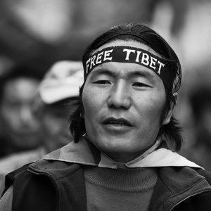Bild für 'Tibet Project'