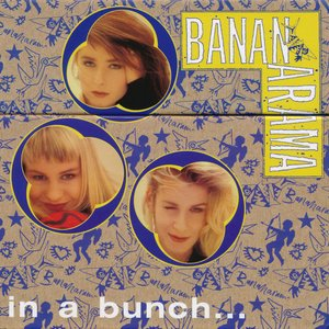 In A Bunch (The Singles 1981-1993)