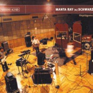 Avatar de Manta Ray & Schwarz