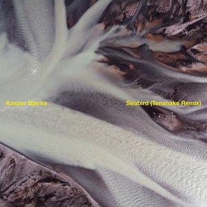 Seabird (Tensnake Remix)