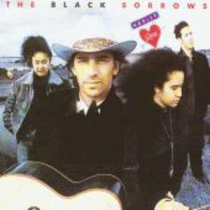 Avatar for The Black Sorrows