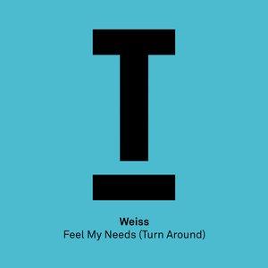 Feel My Needs (Turn Around)