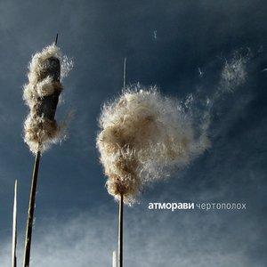 Изображение для 'Chertopoloh (Weed)'