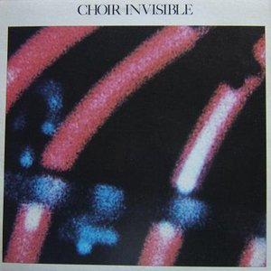 Choir Invisible