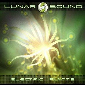 Avatar for Lunar Sound