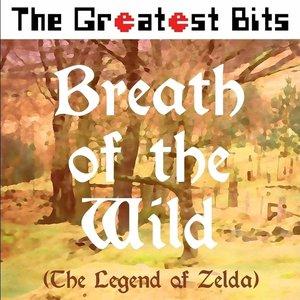 Breath of the Wild (The Legend of Zelda)