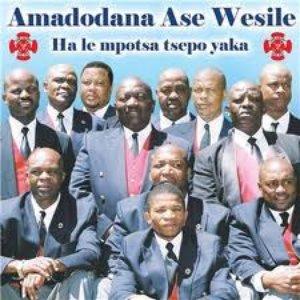 Avatar for Amadodana Ase Wesile