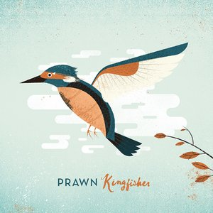 Kingfisher (Deluxe)