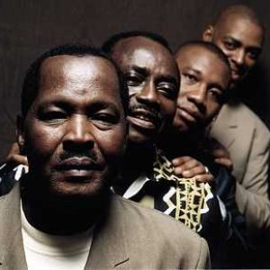 Image pour 'Africando'