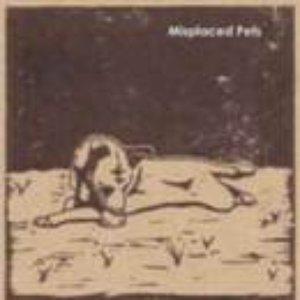 Misplaced Pets