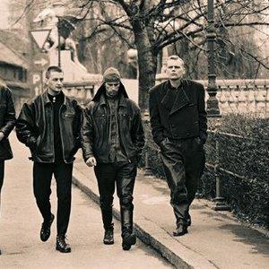 Bild für 'Laibach'