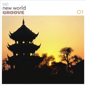 New World Groove 01