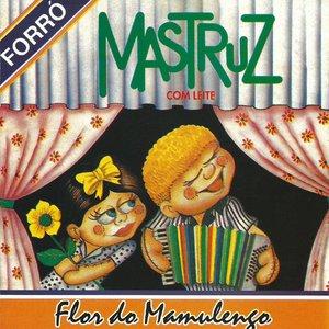 Flor Do Mamulengo