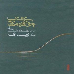 Jooy-e-Noghre-ye-Mahtab(Duo for Setar & Tombak)
