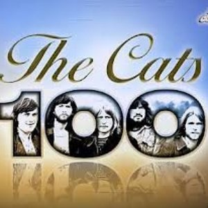 The Cats 100