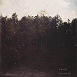Into Darkening Woodland (Demo)