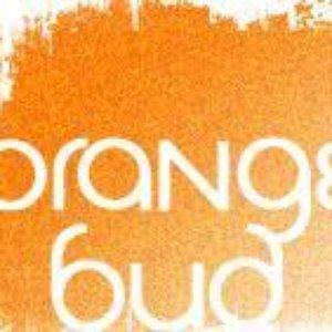 Avatar for Orange Bud