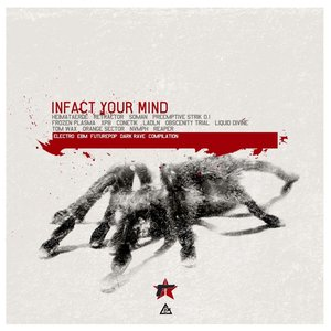 Infact Your Mind