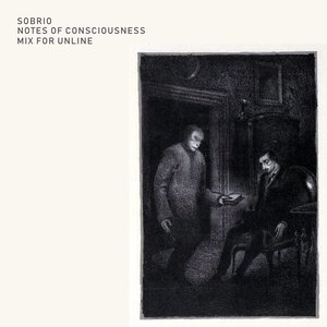 Notes of Consciousness