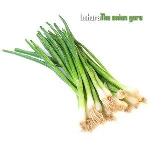 The Onion Gore