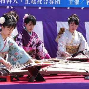 Avatar for Musicians of the Ikuta School