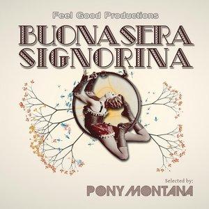 Buonasera Signorina (Selected By Pony Montana)