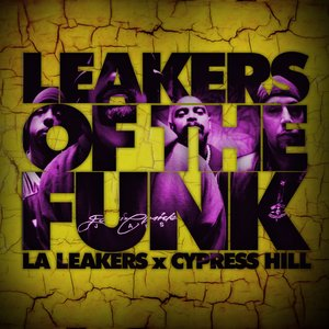 Leakers Of The Funk