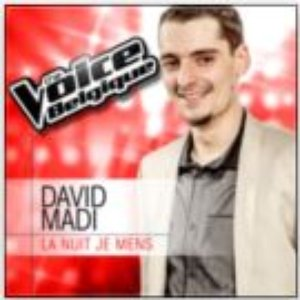 La Nuit Je Mens (From The Voice Belgique 2013)