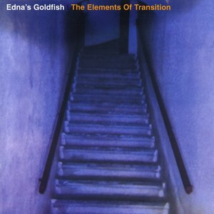 The Elements Of Transition