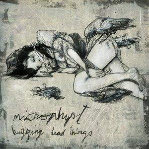 Hugging Dead Things