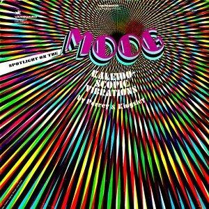Kaleidoscopic Vibrations: Spotlight on the Moog
