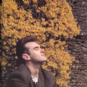 Avatar for Morrissey